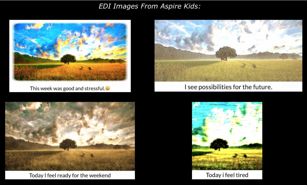 EDI Blog: Innovative Uses of EDI at MGH Aspire